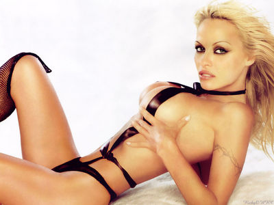 Pamela-anderson-laying-down_medium