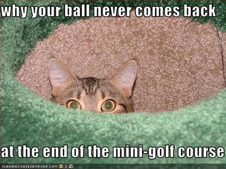 Funny-pictures-minigolf-course-up-close_medium