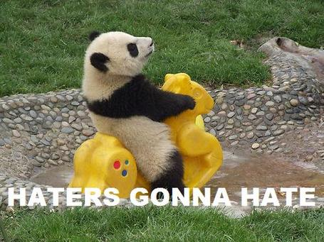 Post all funny pictures here! Haters-gonna-hate-panda_medium