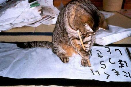 Cat_20writing_medium