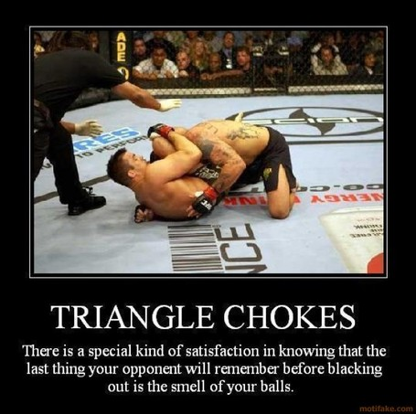Triangle-chokes-mma-demotivational-poster-1236036849_medium