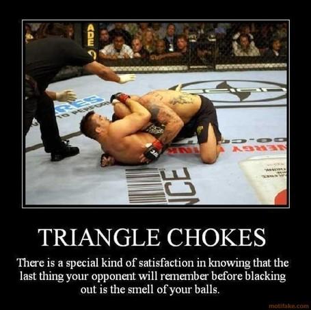 Triangle-chokes-mma-demotivational-poster-1236036849_medium