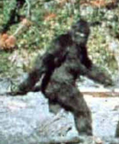Bigfoot_medium