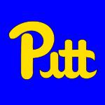 Pitt-script_medium