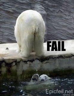 Bears_fail_medium