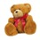 Teddybearicon_medium
