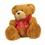 Teddybearicon_medium