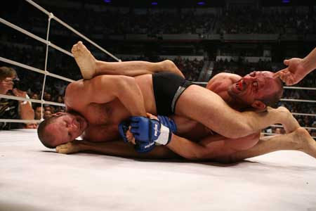 Fedor-armbar_medium