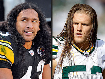 Troy-polamalu-500x375_display_image_medium
