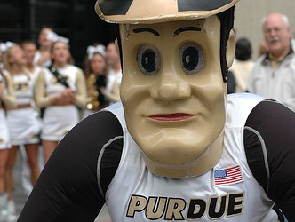 Purdue-pete-787610-332x250_medium