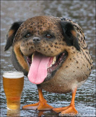 Dognduckpint_medium