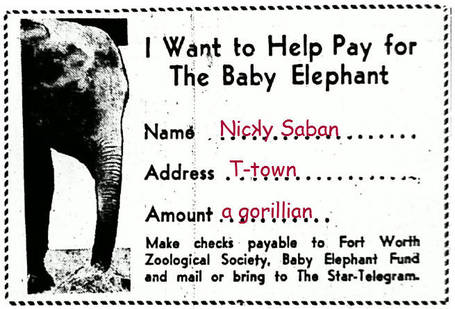 Sabanelephantcard_medium