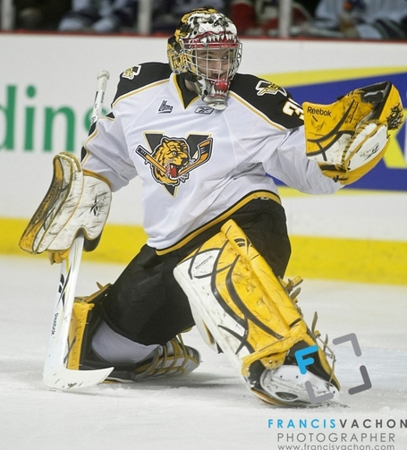 Victoriaville-tigres-david-honzik-06_jpg_medium