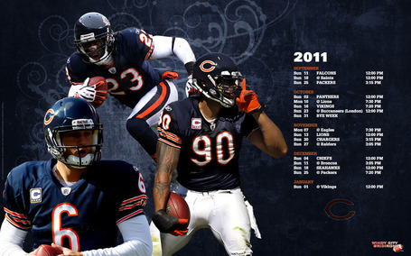 Bears-wallpaper-1680x1050_medium