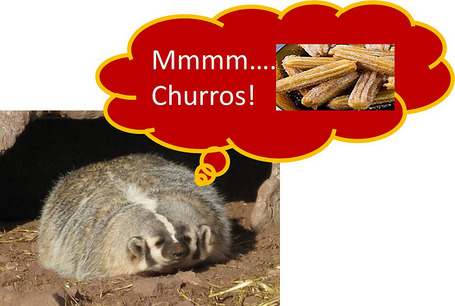 Badger_252520churro_medium