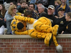 University-of-missouri-traditions-mascot-truman-cat-nap-mu-t-m-00026md_medium