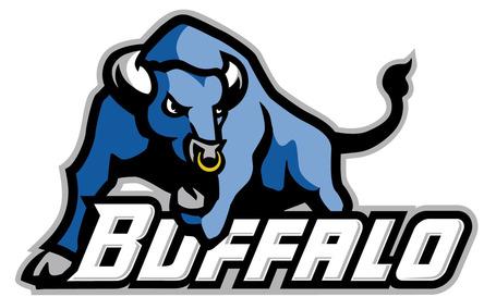 Bulls_logo_medium