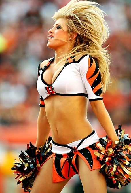 Bengals-ben-gals-cheerleaders_02__medium