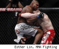 Alistair Overeem vs. Brock Lesnar