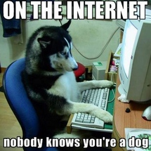 8fa6e-on_the_internet_nobody_knows_you_re_a_dog