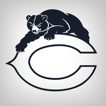 Bearsretrologo4