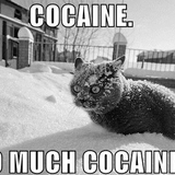 So_much_cocaine