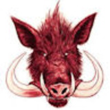 Red_wild_boar_avatar