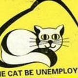 Unemployed_cat