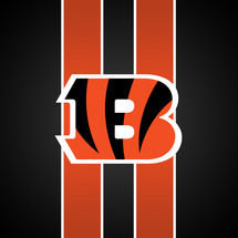 Cincinnati_bengals_wallpaper_by_pasar3-d2xwe7g
