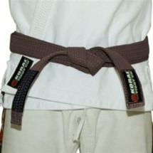 Bjj_brown_belt