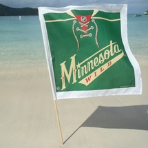 Minny_flag_1_cropped