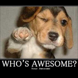 Who_s_awesome