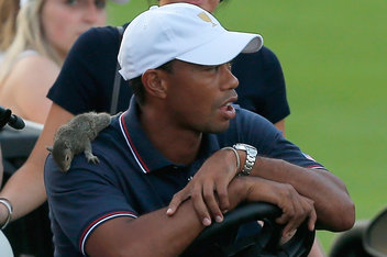 Presidents Cup 2013: Tiger Woods' back, Sammy the Squirrel, Fresh Prince high ...