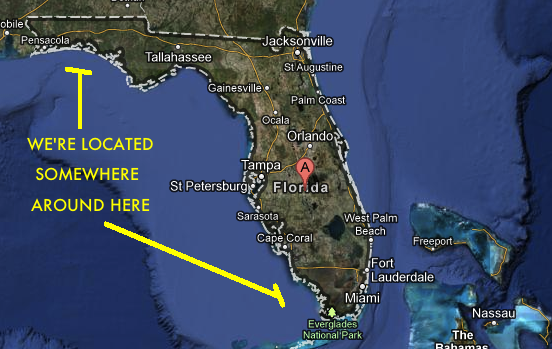 A Detailed Guide To Florida Gulf Coast The Best School On Earth Sbnation Com